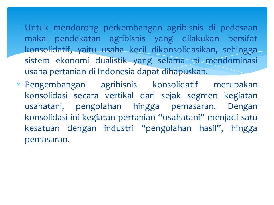 Untuk mendorong perkembangan agribisnis di pedesaan maka pendekatan agribisnis yang dilakukan bersifat konsolidatif, yaitu usaha kecil dikonsolidasikan, sehingga sistem ekonomi dualistik yang selama ini mendominasi usaha pertanian di Indonesia dapat dihapuskan.