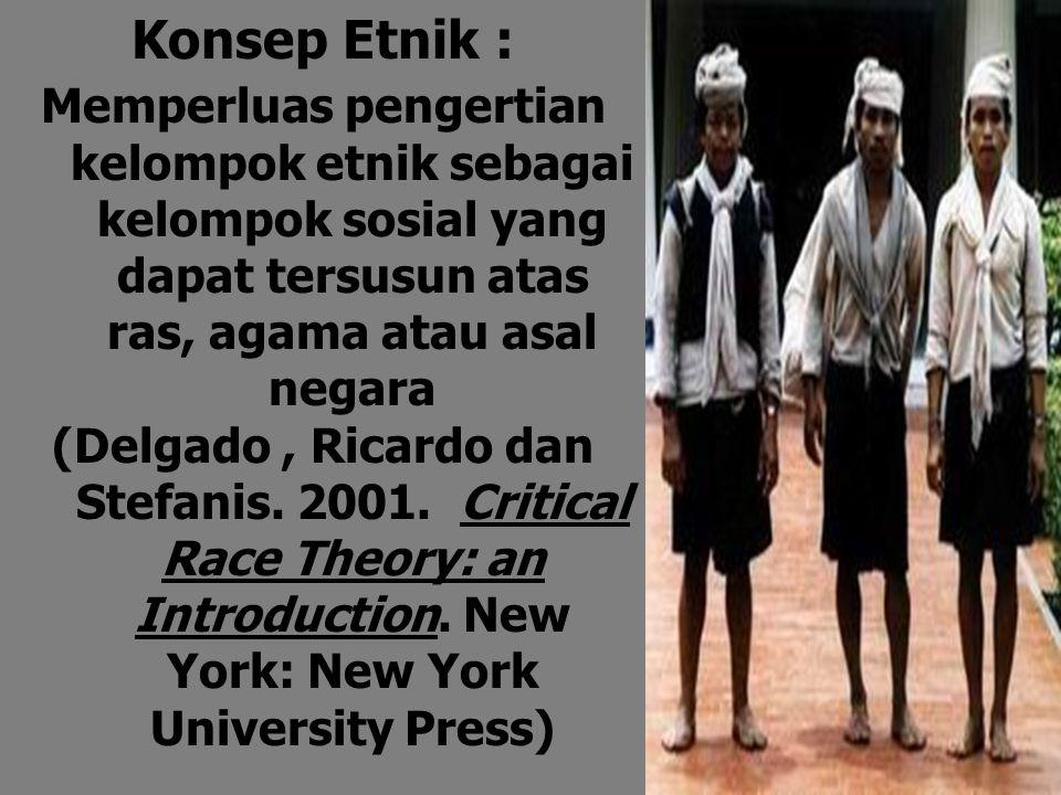 Konsep Etnik : Memperluas pengertian kelompok etnik sebagai kelompok sosial yang dapat tersusun atas ras, agama atau asal negara.