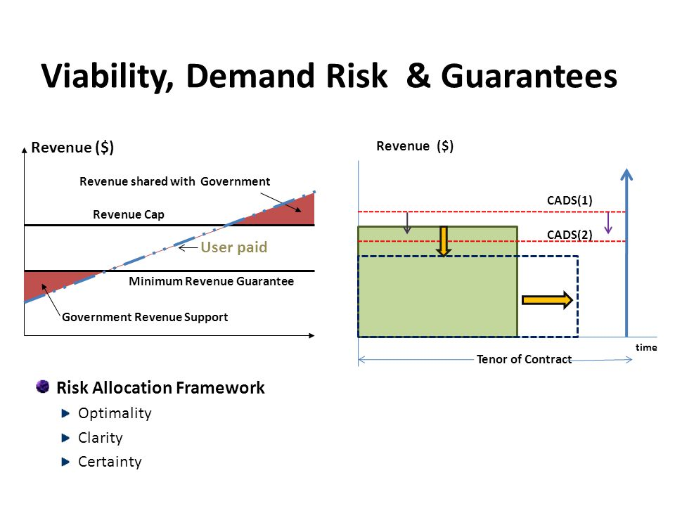 Viability, Demand Risk & Guarantees