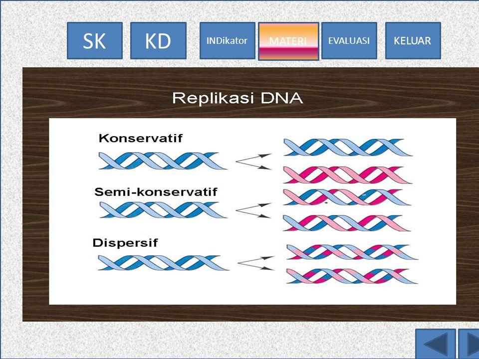 MATERI Cara Replikasi DNA
