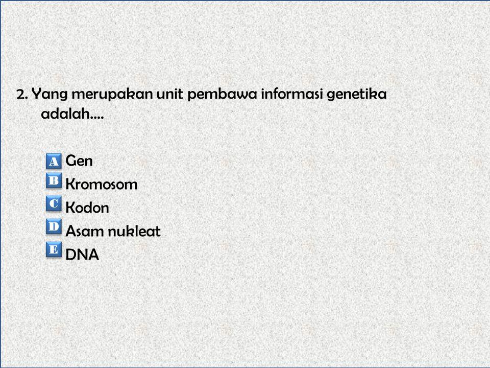 2. Yang merupakan unit pembawa informasi genetika adalah.…
