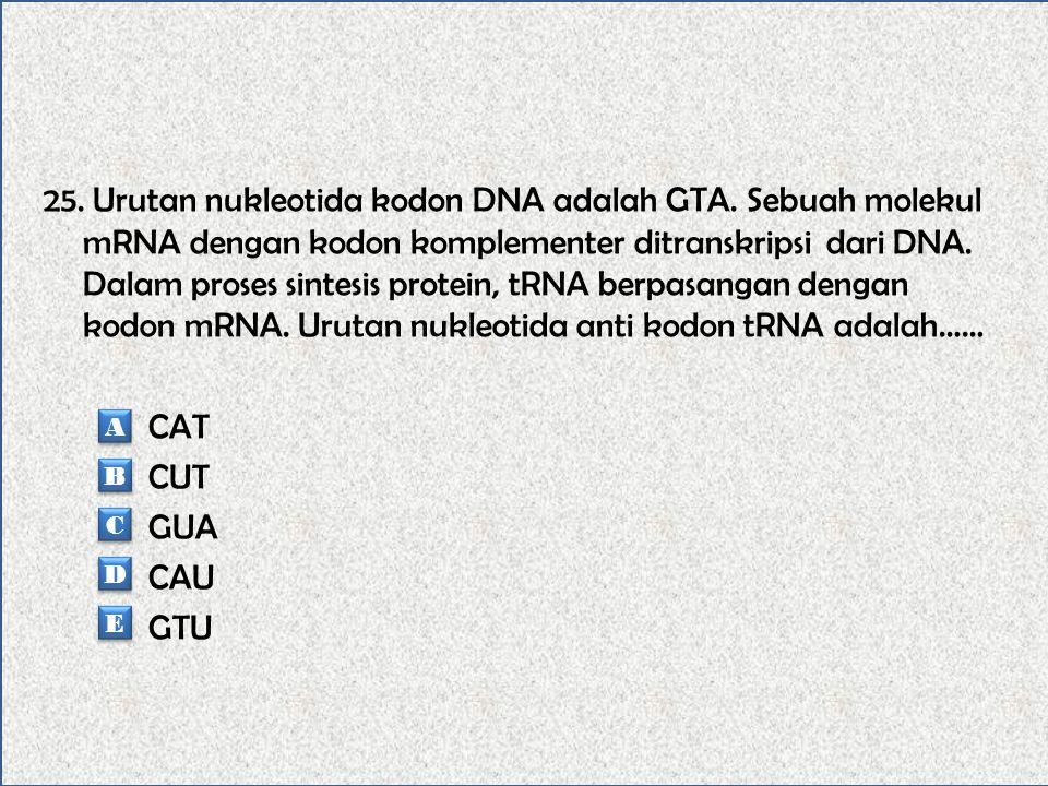 25. Urutan nukleotida kodon DNA adalah GTA