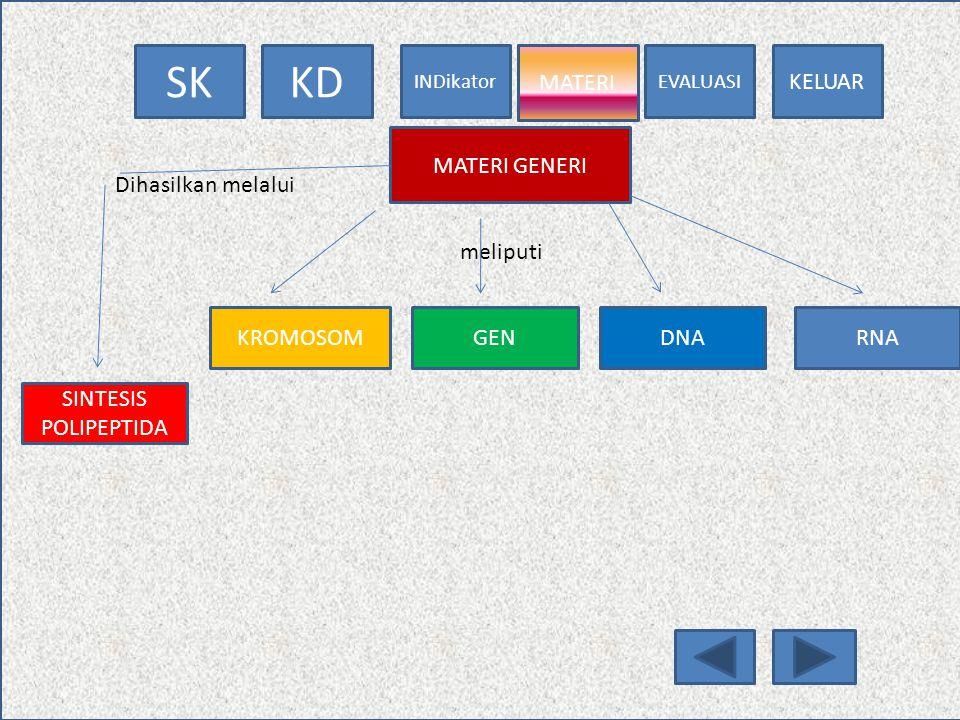 MATERI MATERI GENERI Dihasilkan melalui meliputi KROMOSOM GEN DNA RNA SINTESIS POLIPEPTIDA