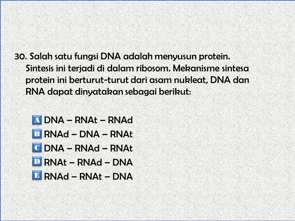 30. Salah satu fungsi DNA adalah menyusun protein