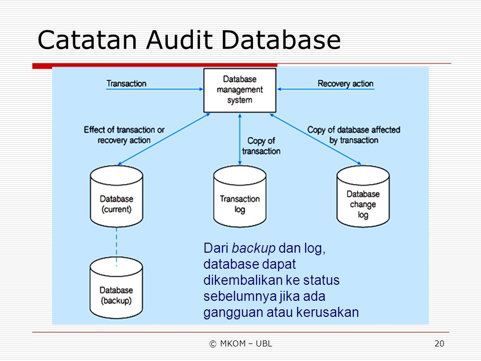 Catatan Audit Database