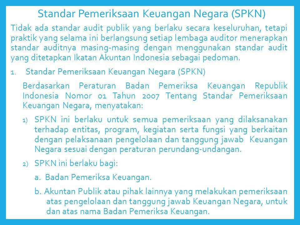 Standar Pemeriksaan Keuangan Negara (SPKN)