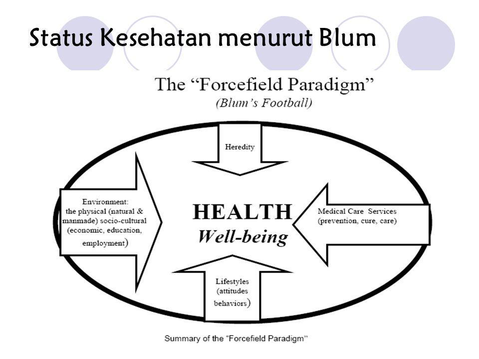 Status Kesehatan menurut Blum