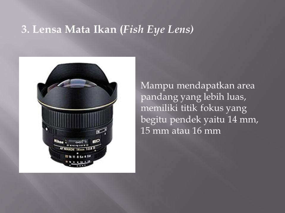 3. Lensa Mata Ikan (Fish Eye Lens)