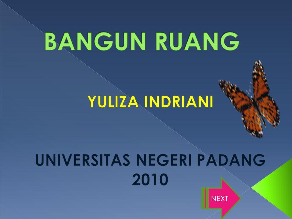 YULIZA INDRIANI UNIVERSITAS NEGERI PADANG 2010
