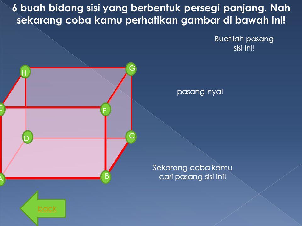 6 buah bidang sisi yang berbentuk persegi panjang