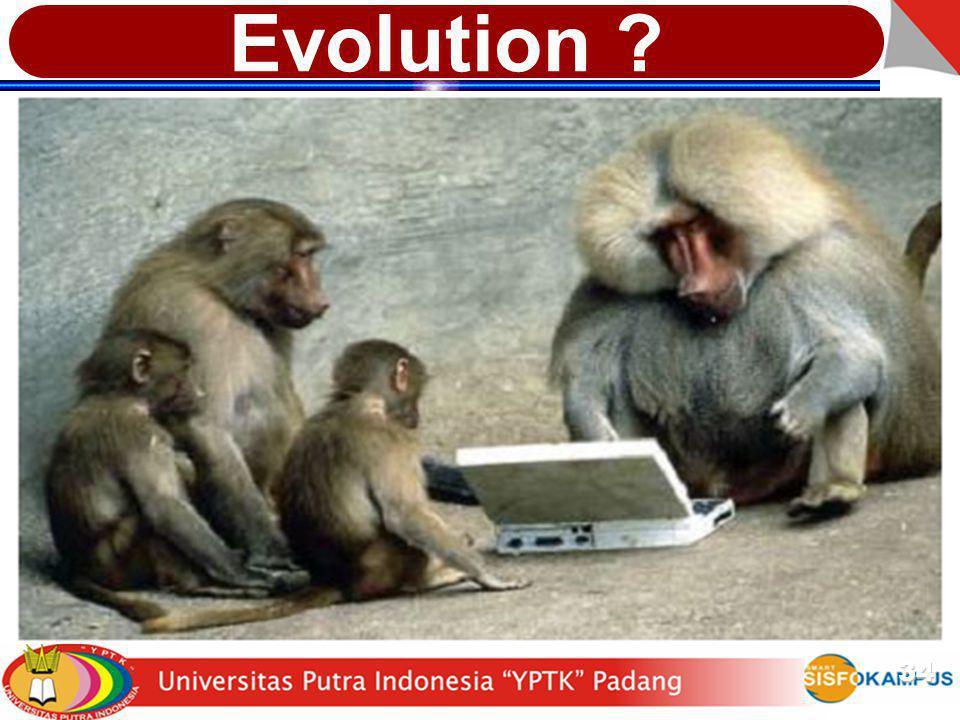 Evolution 34