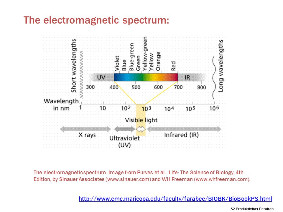 The electromagnetic spectrum: