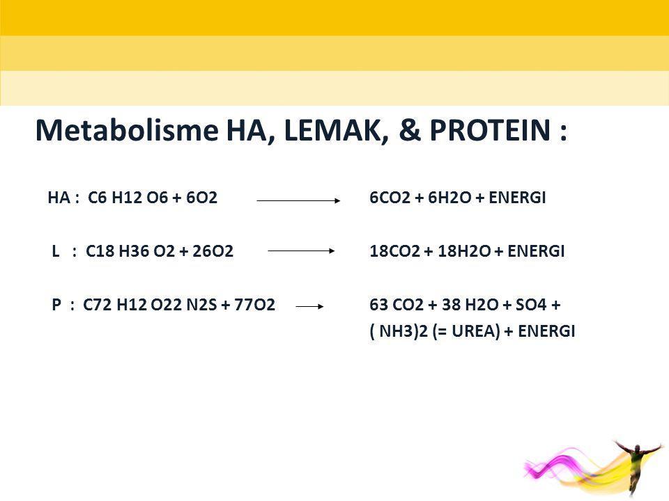 Metabolisme HA, LEMAK, & PROTEIN :