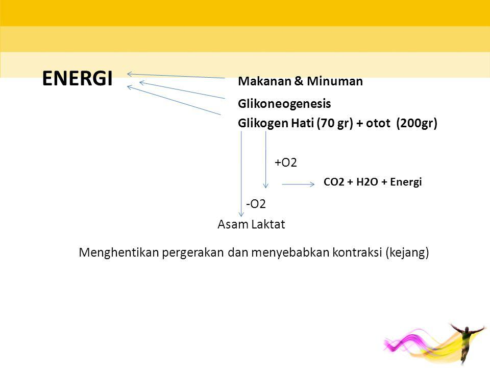 ENERGI Makanan & Minuman