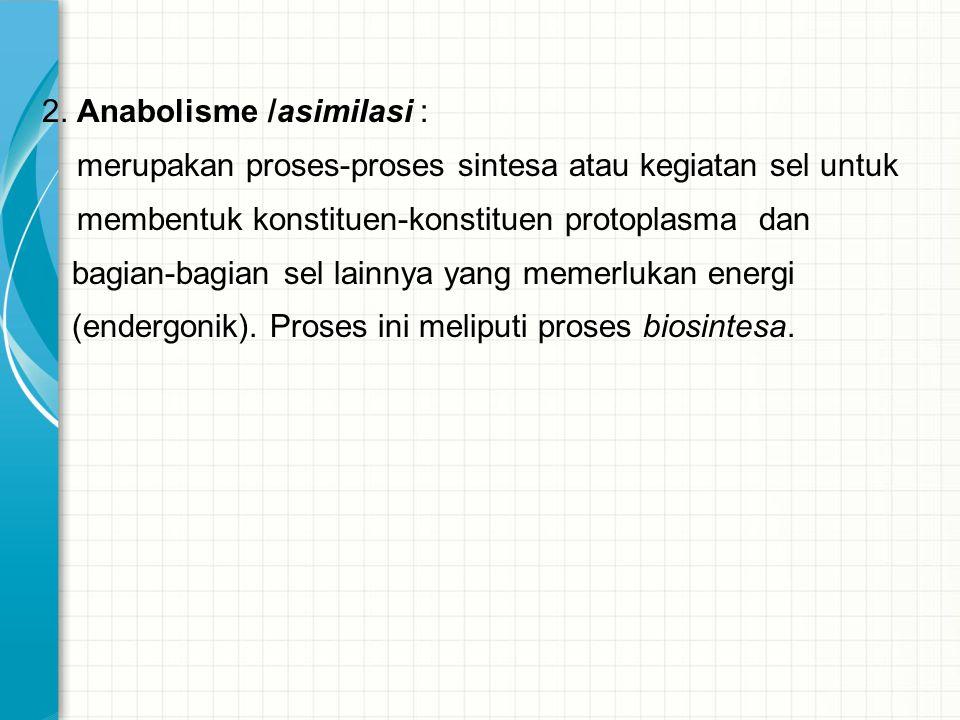 2. Anabolisme /asimilasi :