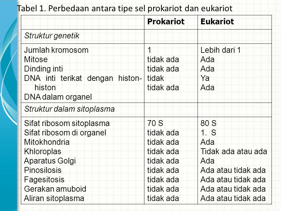 Tabel 1. Perbedaan antara tipe sel prokariot dan eukariot