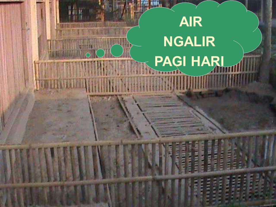 AIR NGALIR PAGI HARI
