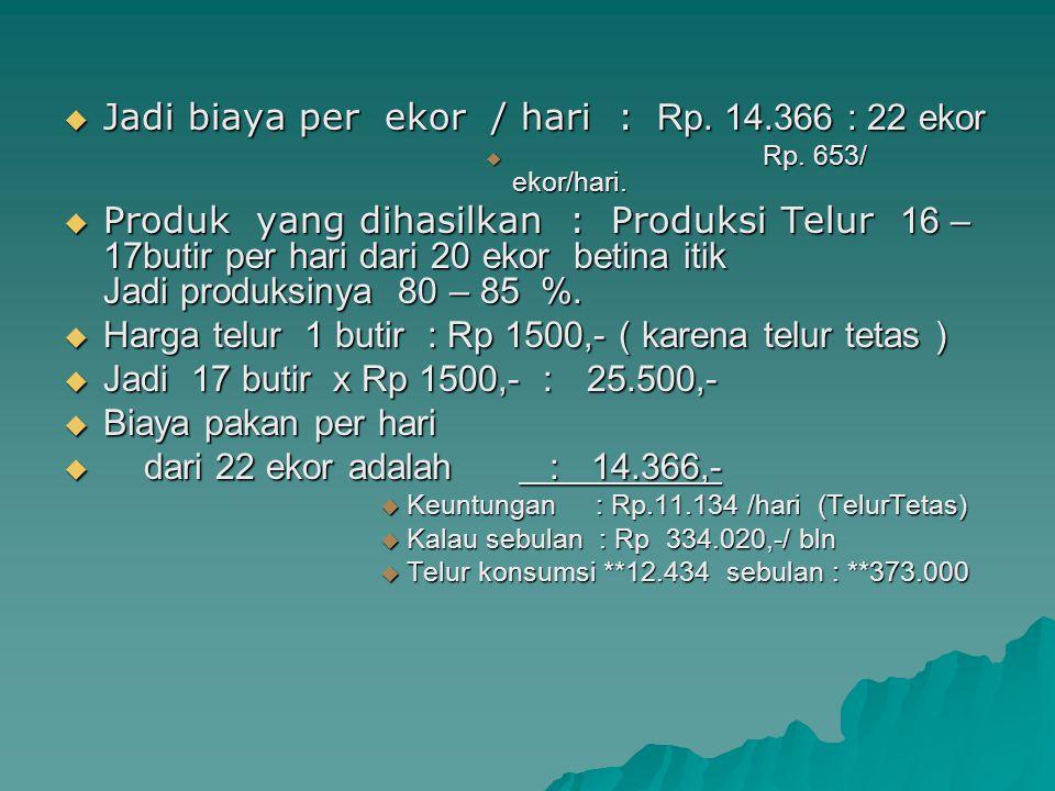 Jadi biaya per ekor / hari : Rp. 14.366 : 22 ekor