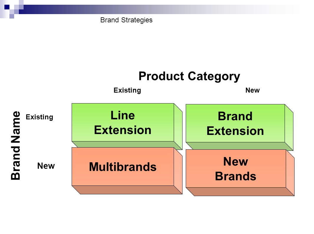 Product Category Line Extension Brand Extension New Brands Multibrands