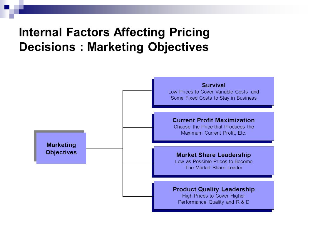 Internal Factors Affecting Pricing Decisions : Marketing Objectives