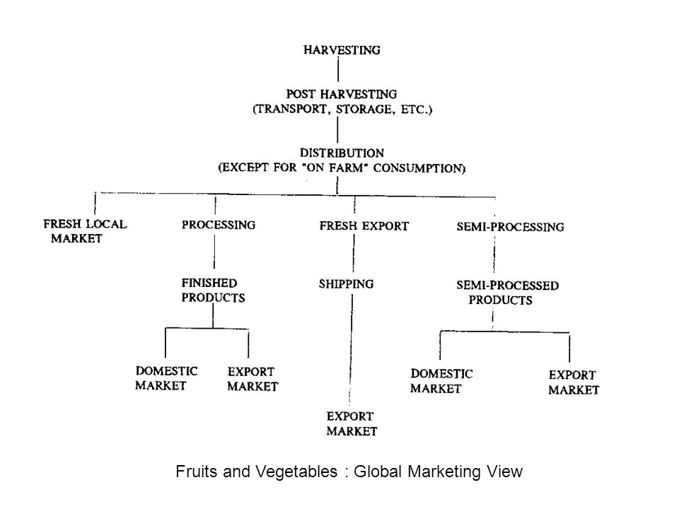 Fruits and Vegetables : Global Marketing View
