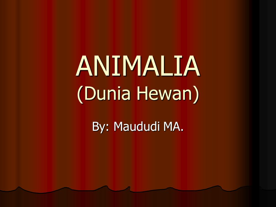ANIMALIA (Dunia Hewan)