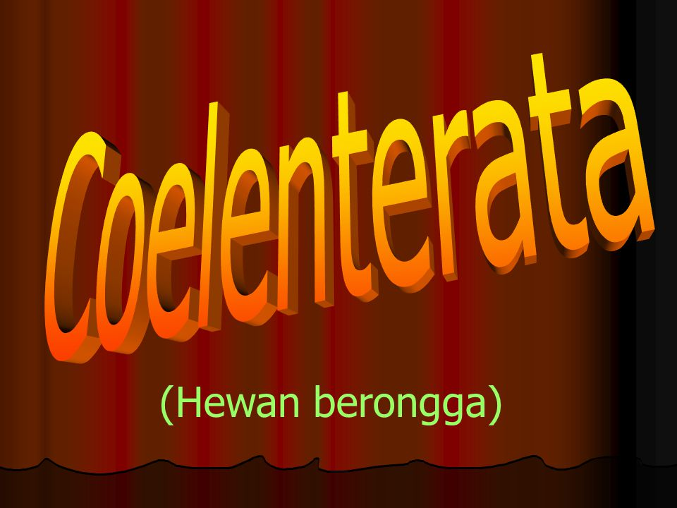 Coelenterata (Hewan berongga)