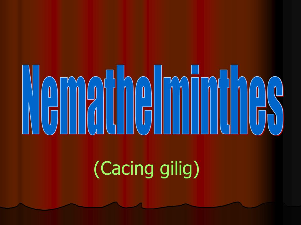 Nemathelminthes (Cacing gilig)