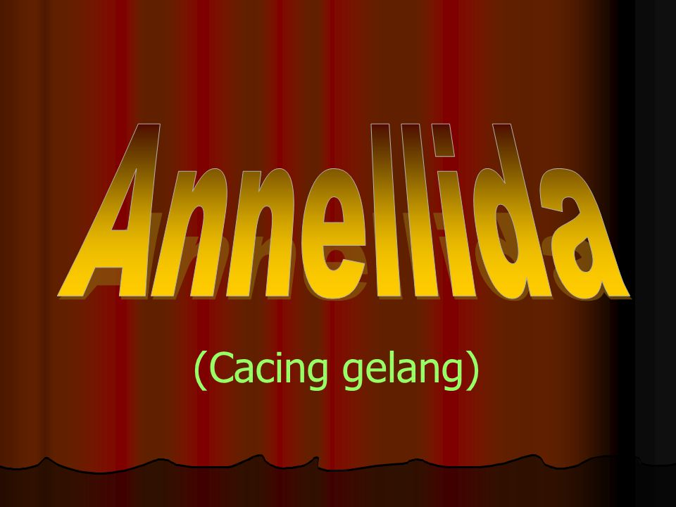 Annellida (Cacing gelang)