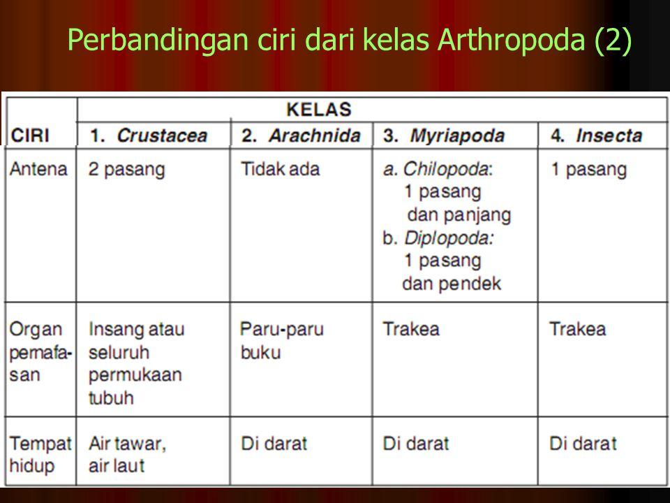 Perbandingan ciri dari kelas Arthropoda (2)