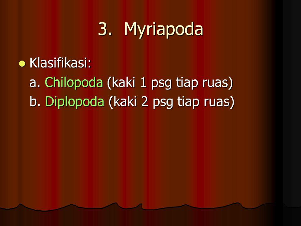 3. Myriapoda Klasifikasi: a. Chilopoda (kaki 1 psg tiap ruas)