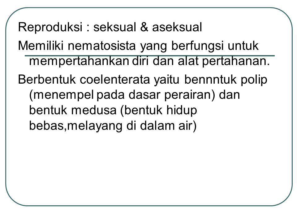 Reproduksi : seksual & aseksual