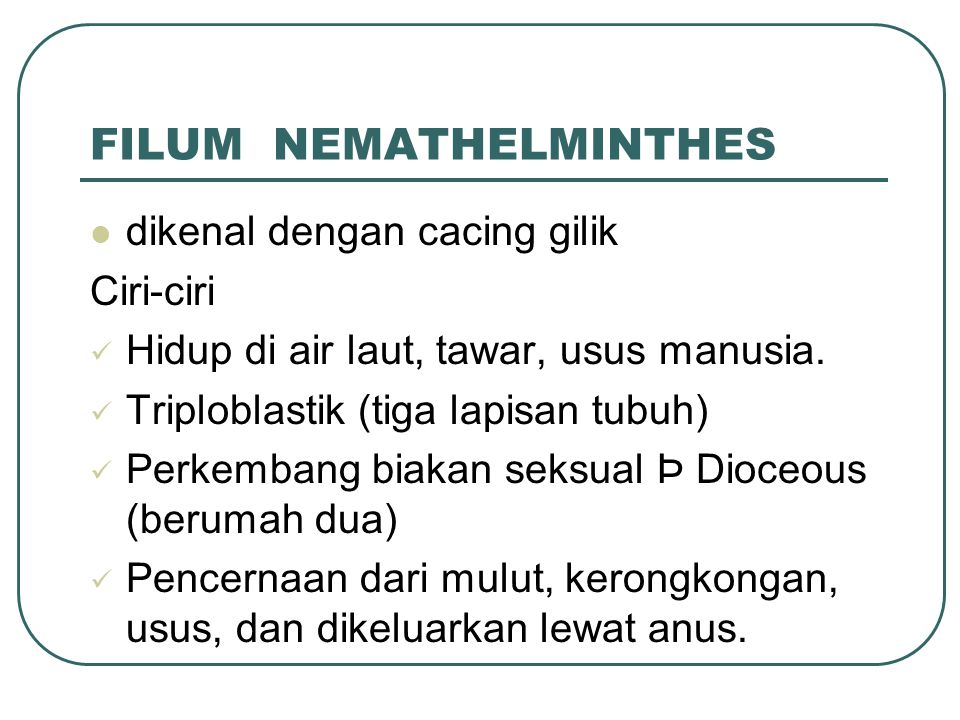 FILUM NEMATHELMINTHES