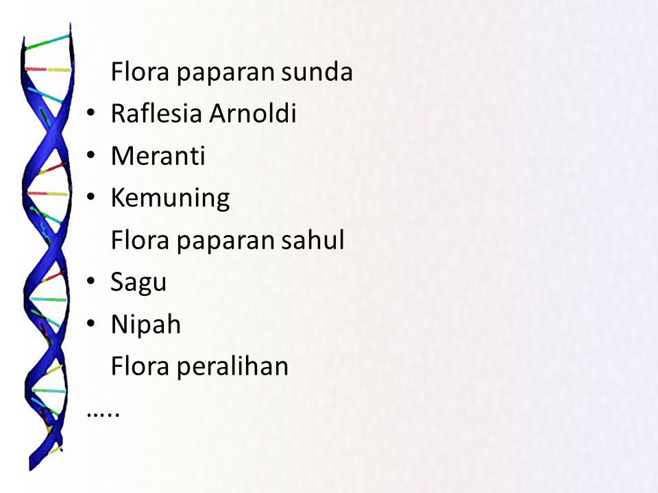 Flora paparan sunda Raflesia Arnoldi. Meranti. Kemuning. Flora paparan sahul. Sagu. Nipah. Flora peralihan.