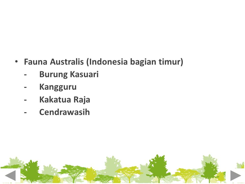 Fauna Australis (Indonesia bagian timur)
