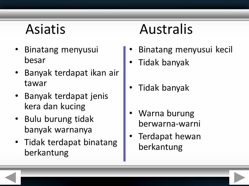 Asiatis Australis Binatang menyusui besar