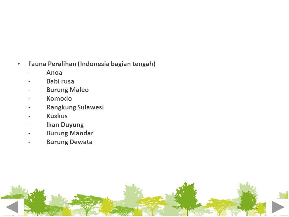 Fauna Peralihan (Indonesia bagian tengah)
