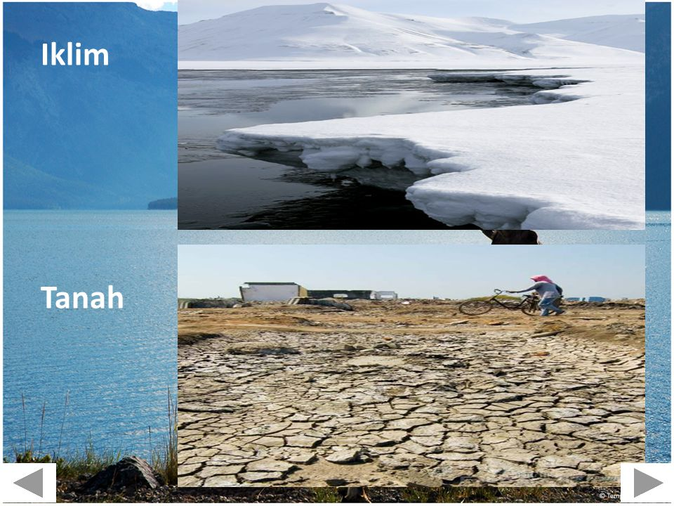 Iklim Tanah