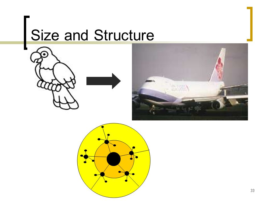 Size and Structure