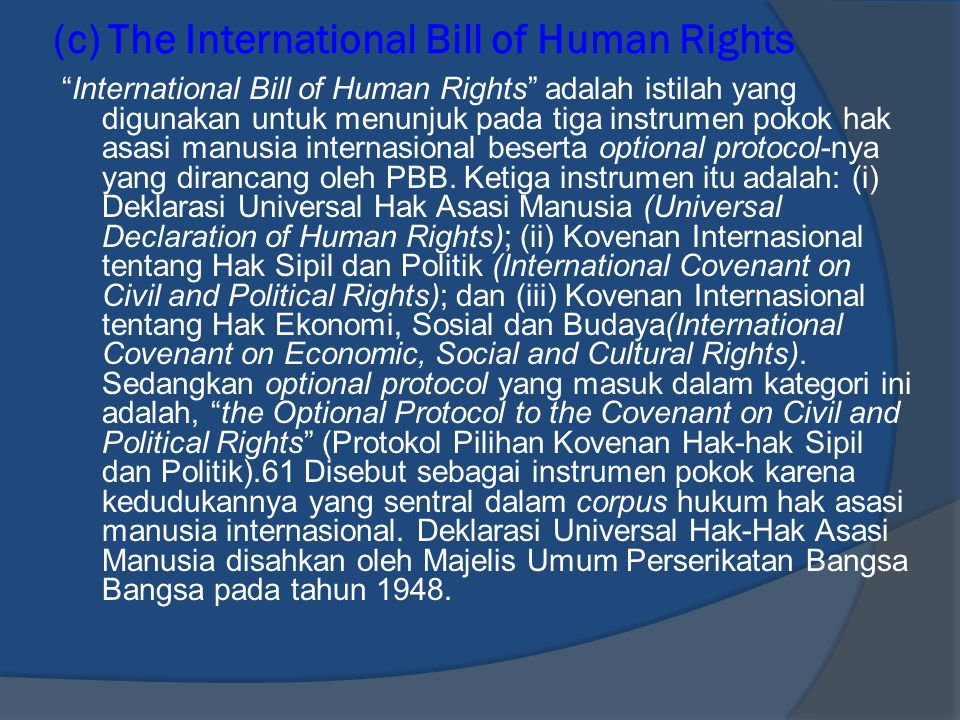 (c) The International Bill of Human Rights