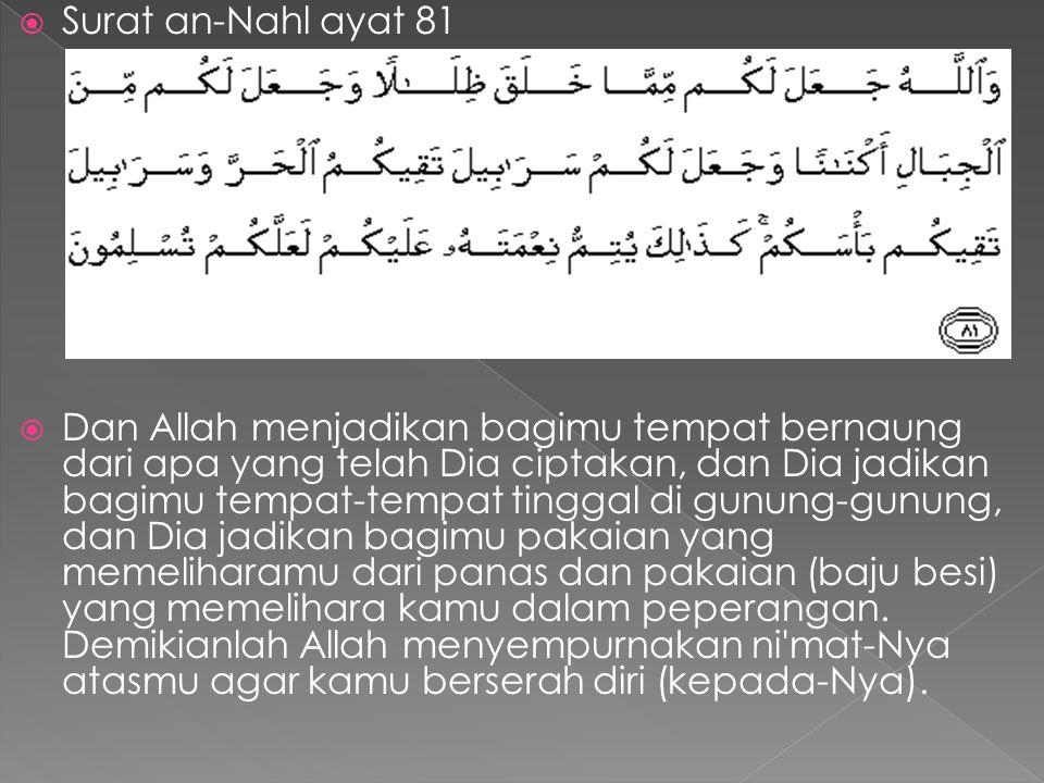 Surat an-Nahl ayat 81
