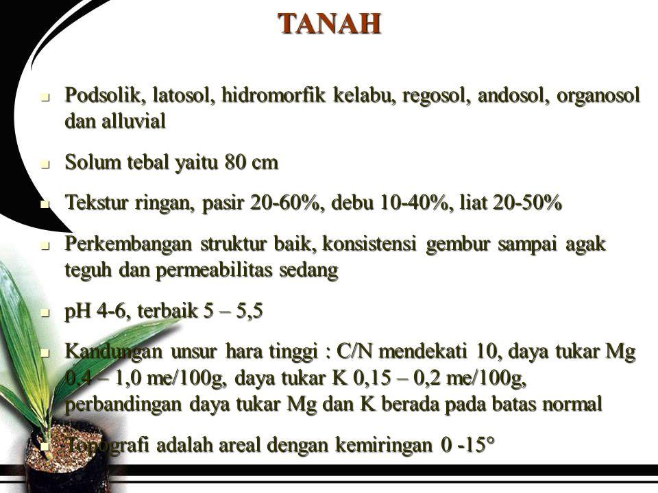TANAH Podsolik, latosol, hidromorfik kelabu, regosol, andosol, organosol dan alluvial. Solum tebal yaitu 80 cm.