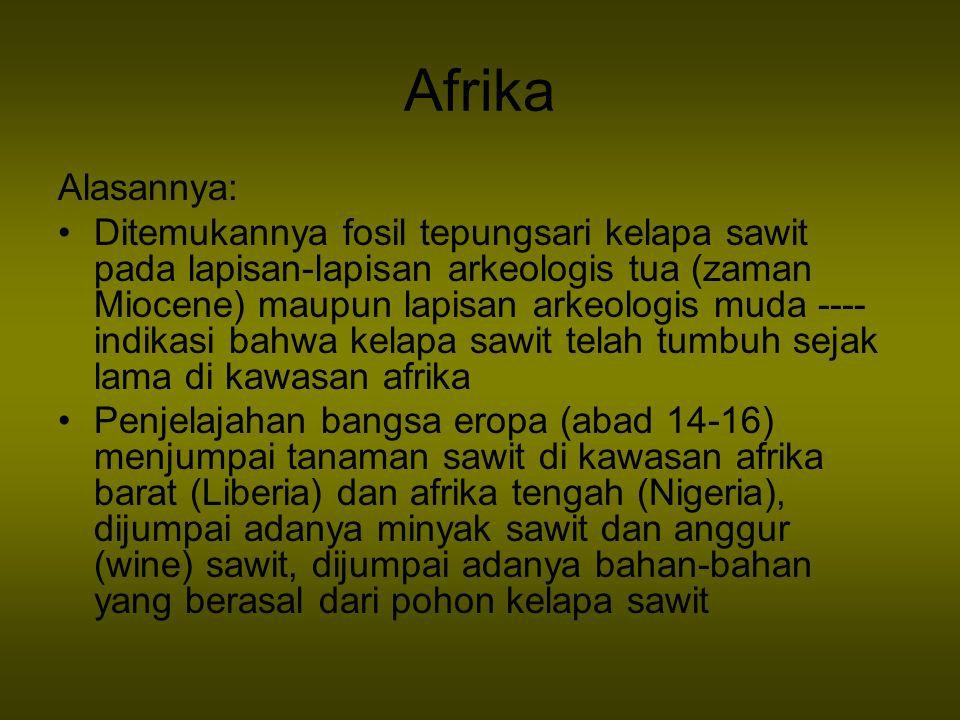 Afrika Alasannya: