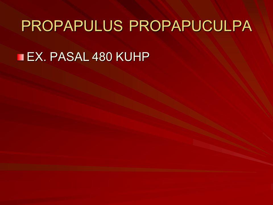 PROPAPULUS PROPAPUCULPA