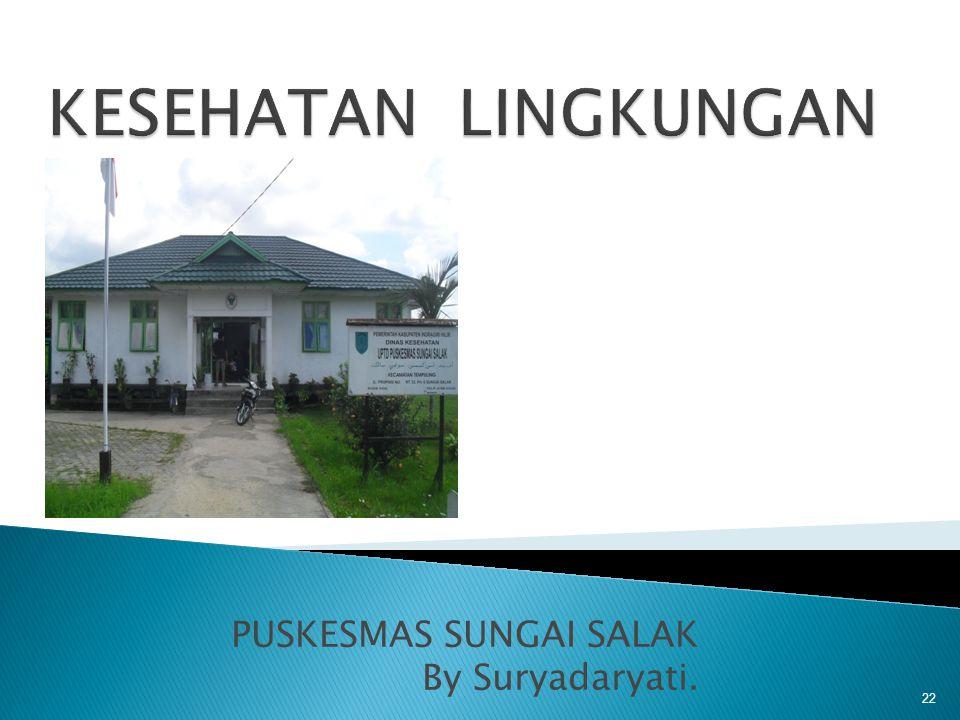 PUSKESMAS SUNGAI SALAK By Suryadaryati.
