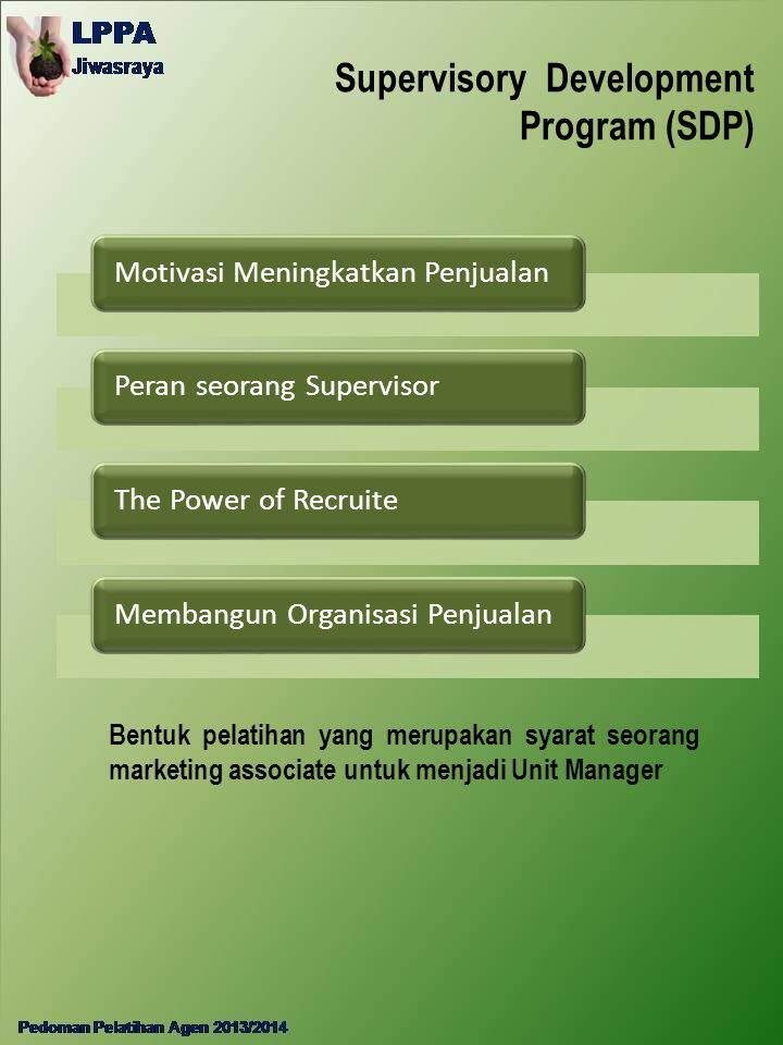Supervisory Development Program (SDP)