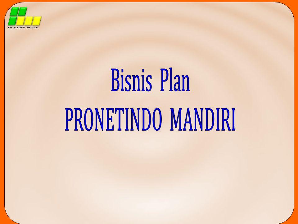 PRONETINDO MANDIRI Bisnis Plan PRONETINDO MANDIRI