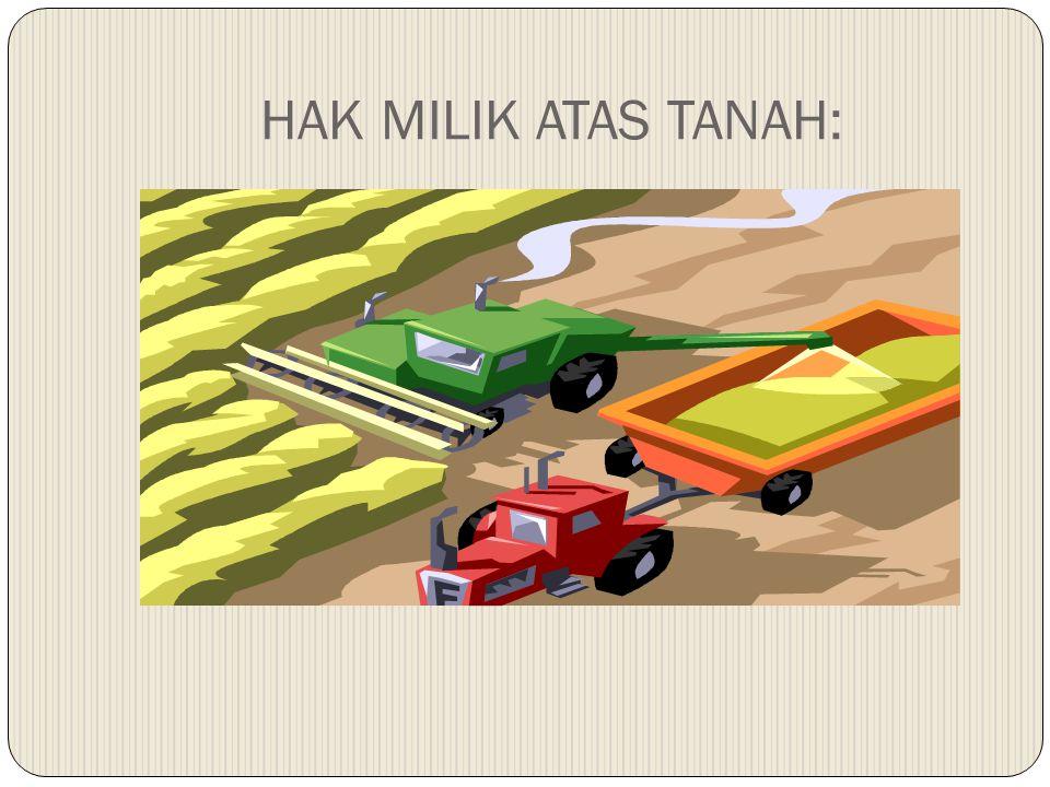 HAK MILIK ATAS TANAH: