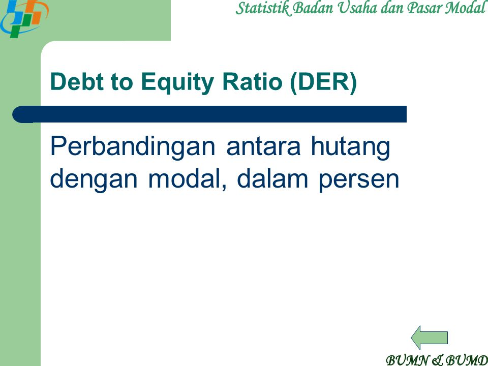 Debt to Equity Ratio (DER)