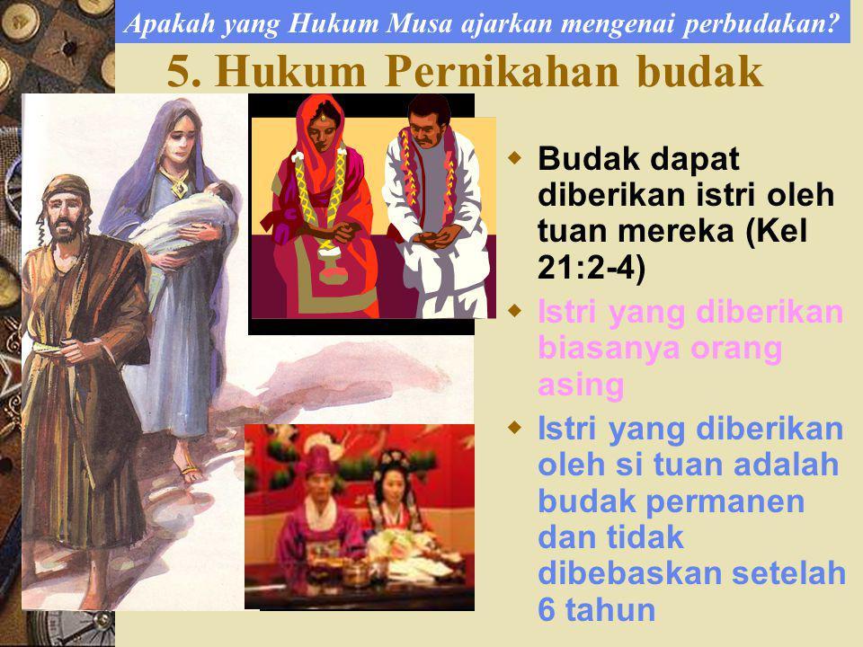 5. Hukum Pernikahan budak